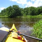 Kayaking the Mississippi Backwaters