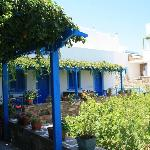 comunal garden with BBQ