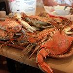 A dozen crabs at Captain John's