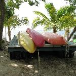 Kayaks (free for guests)