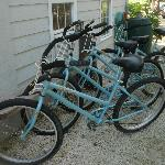 Cruiser Bikes (free for guests)