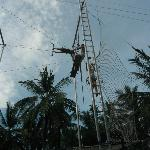 Me on the Trapeze