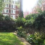 Garden -- view 2