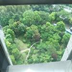 view of garden from lift