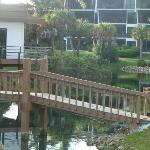 lagoon area in center of complex included pool/hot tub