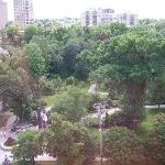 View of Public Gardens from room 820