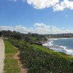 view of coogee