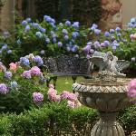 Courtyard with Hydrangeas and Fountain