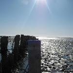 Vadehavet tæt på