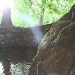 Chateau garden + Lady Bath
