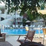 Pool/Bar area at the Acelya.