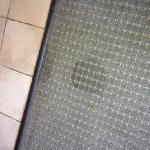 Burnt Carpet In Living Room