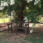 MBG Wooden Bench