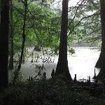 Chicot Park Lake