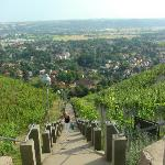 Climbing the steps up to the Spitzhause restaurant, alternatively take a taxi