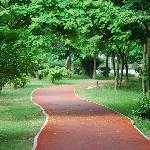 Park & Jogging Track