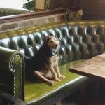 Visit the Ancient Briton Pub just down the road