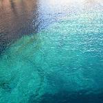 Les fonds marins turquoises aux pieds des calanques de Scandola