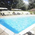 rustig genieten in het groen aan 't zwembad