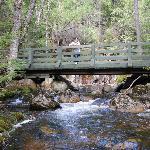Pont sur la rivière la Diable au Parc National du Mont Tremblant