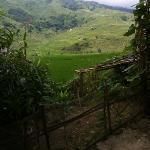 view from Mai's House (Sapa O'Chau Homestay)