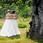 our wedding in the meadow