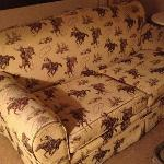 Dirty Roy Rogers couch