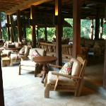 Reception Area overlooking the jungle