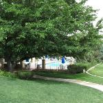 Beautiful trees and grounds, pool