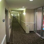 Hallway off of elevators