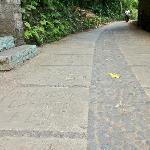 The charming road from the villa to Ubud town. Carved with words that are amusing & good for mus