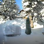 jardin du chalet sous la neige