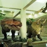 ティラノサウルスとトリケラトプス