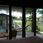 view from bungalows