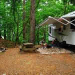 Enjoy some quality family time in private, wooded sites