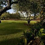 Beau Rivage Golf Course No. 11