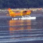 Andrew float plane