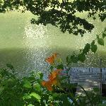vue du bout du terrain sur le canal