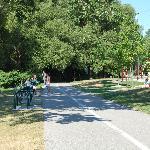 Trail for running, walking, biking, inline skating....