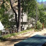 Our view out the door of our Tent Cabin at Indian Flat