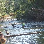 Sooke river, just below the potholes