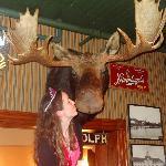 Smoock the moose