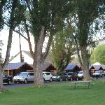 Cabins on the grassy area
