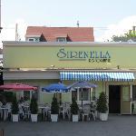 Sirenella