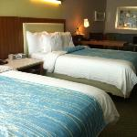 nice decor and large room