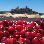 Plenty of fresh local Andalucian seasonal produce