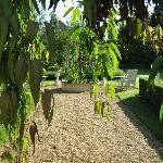 Backyard area for relaxing in the sun, reading, enjoying the fountain