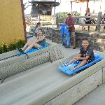 Alpine slide the kids loved it.
