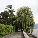 Gangvei ved sjøkanten