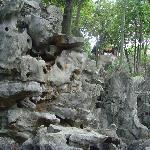 Kalksteinlandschaft